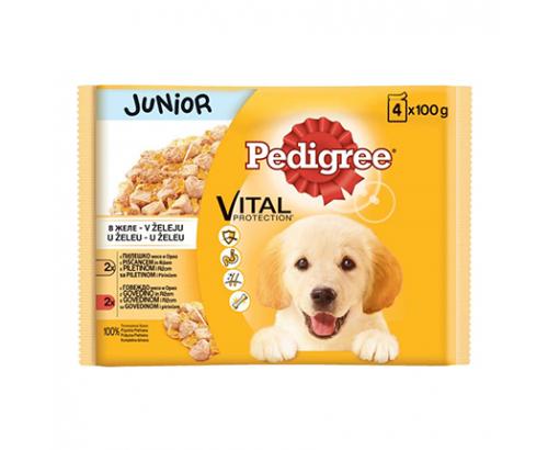 Храна за кучета Педигри Джуниър 4х100г Пауч